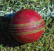cricket-ball-school-sports