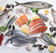 Wholesale seafood